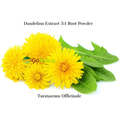 eople use the leaves stem flower and root of the dandelion for medicinal purposes