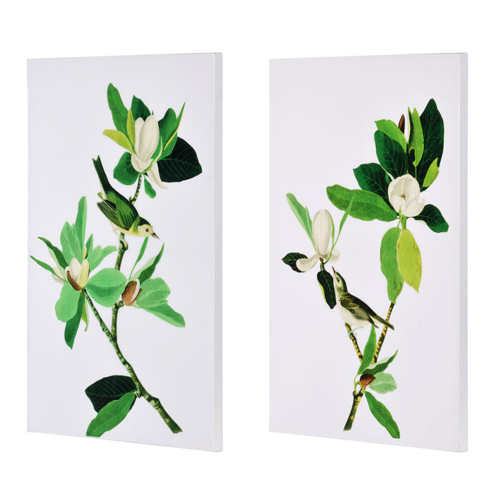 SET/2 BOTANICAL MAGNOLIA ART