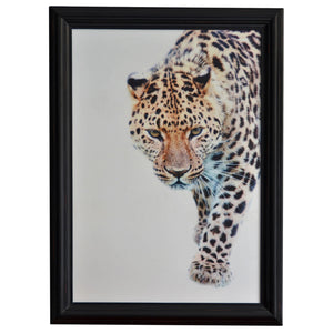 Timber Framed Leopard Walking Wall Art, 110cm