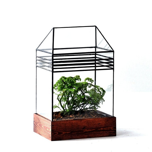 The Baret House Terrarium - Pure Detroit