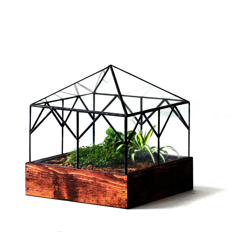 The Cottage Terrarium - Pure Detroit