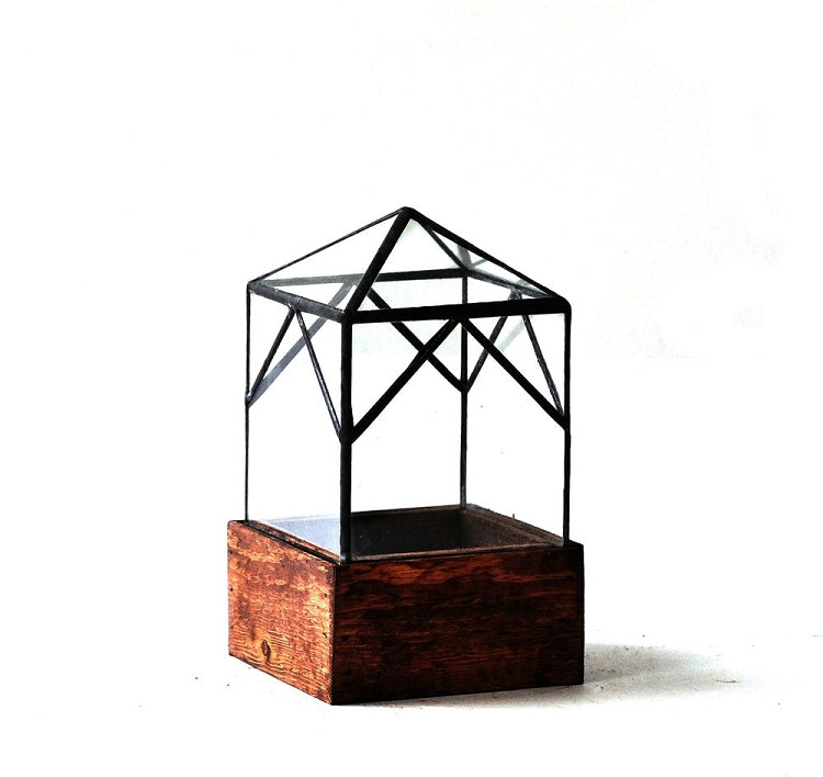 The Ellias Trap Terrarium - Pure Detroit