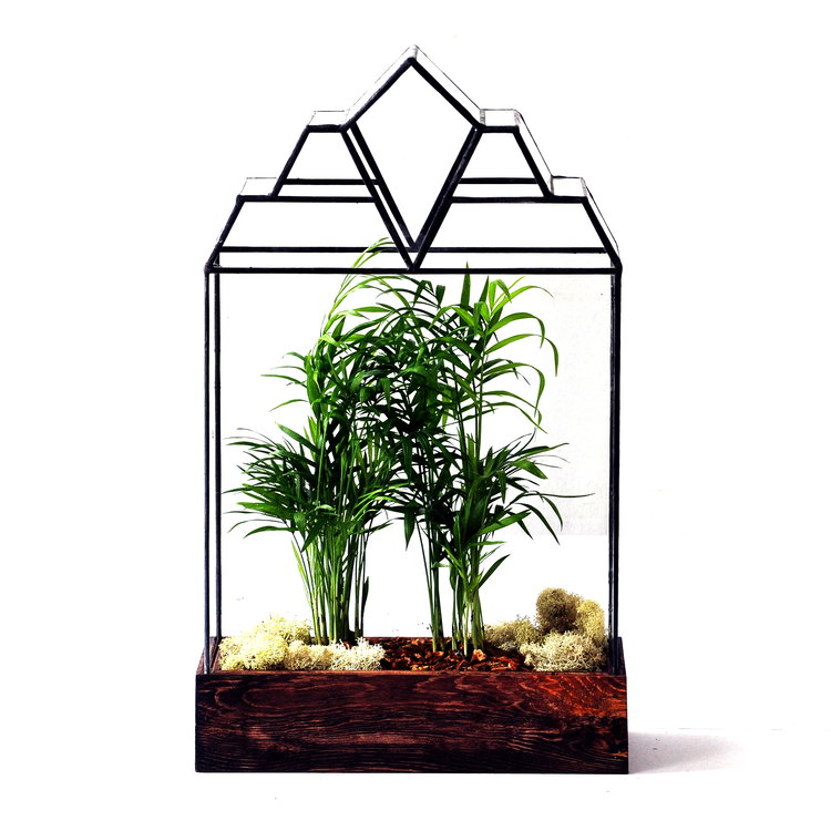 The Mendel Terrarium - Pure Detroit