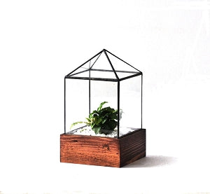 Little House Terrarium - Pure Detroit