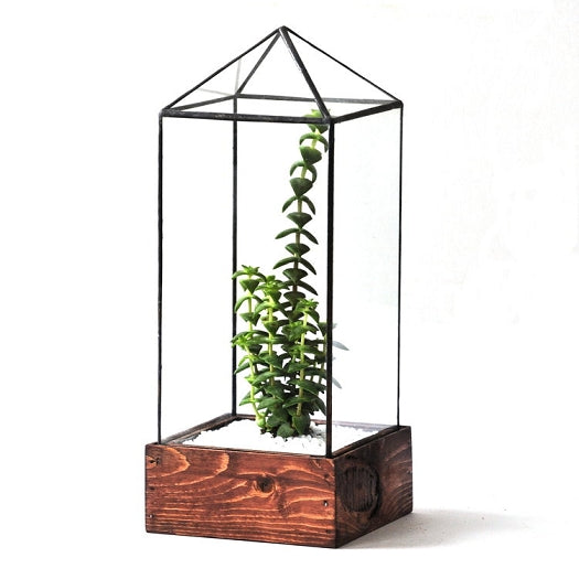 Tower Terrarium - Pure Detroit