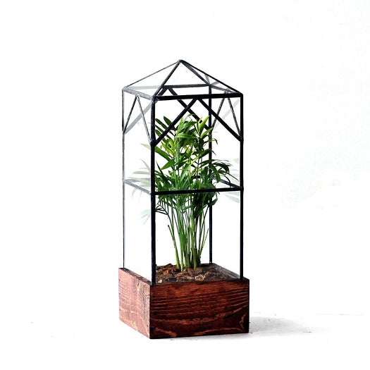 North Tower Terrarium
