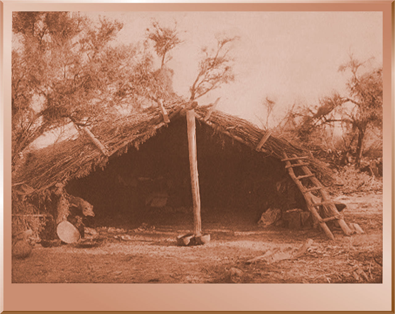 Home in the Mesquite - Chemehuevi