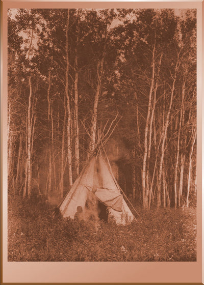 A Chipewyan Tipi Among the Aspens