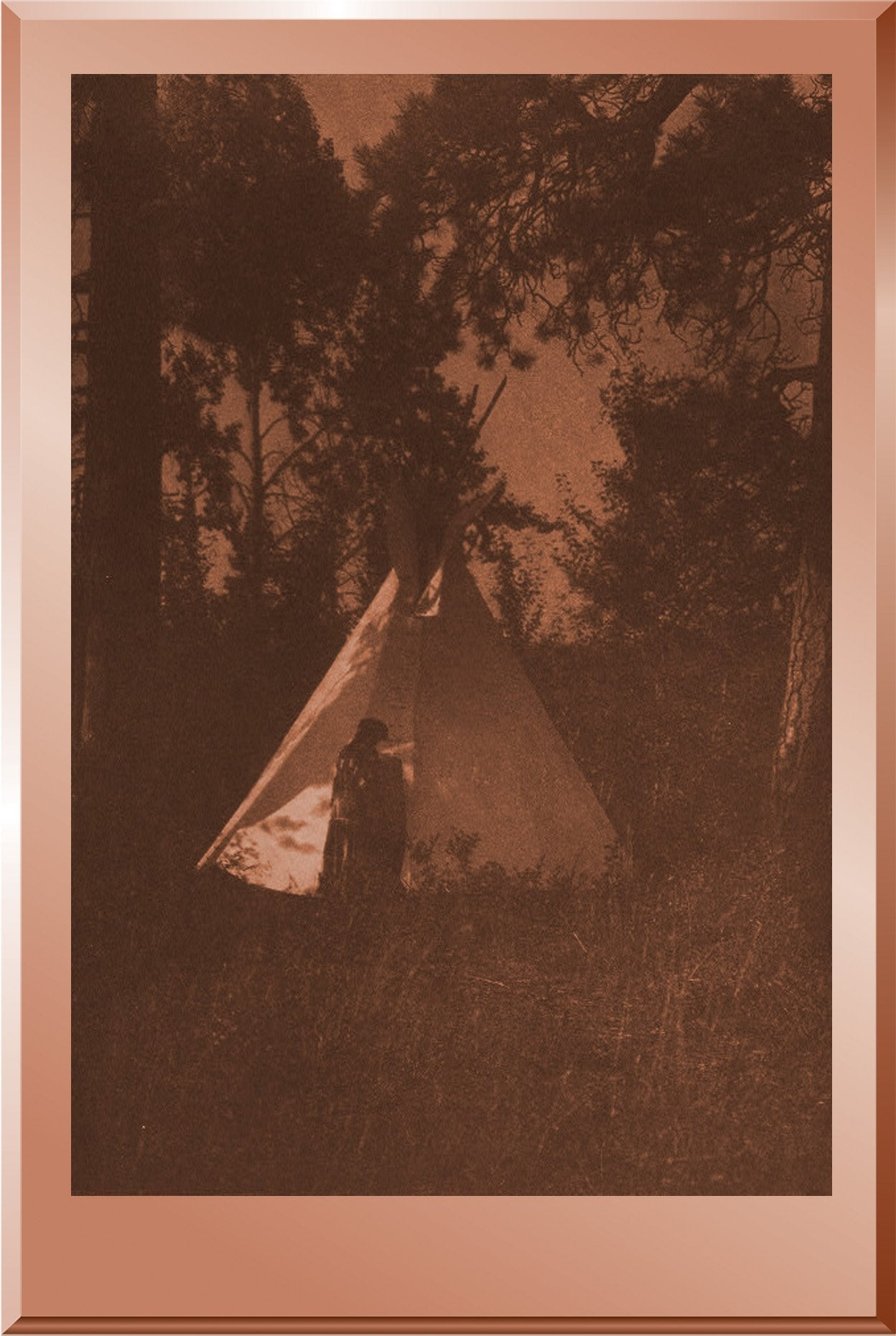 Camp in the Forest - Kutenai