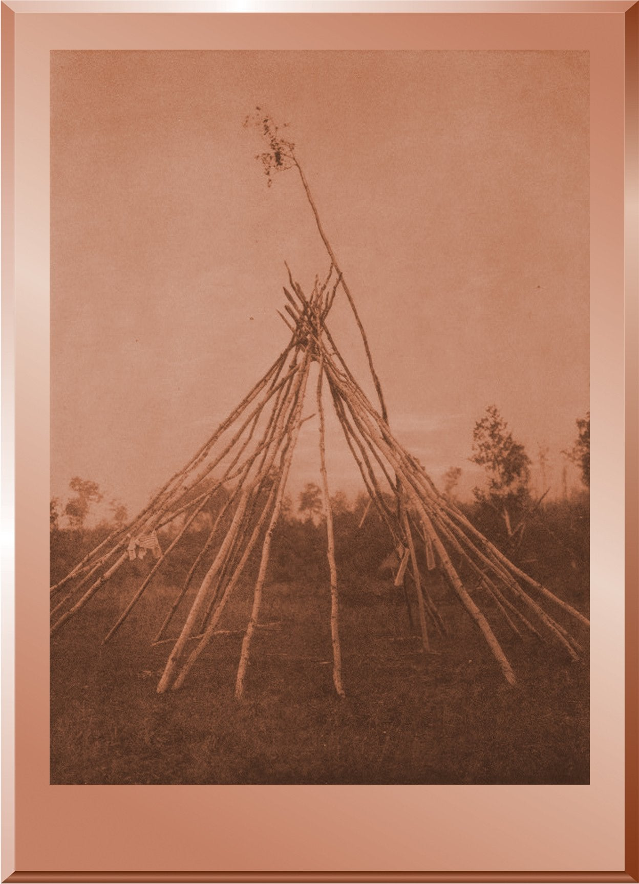 Frame of the Sponsor's Tipi, Cree Sun Dance