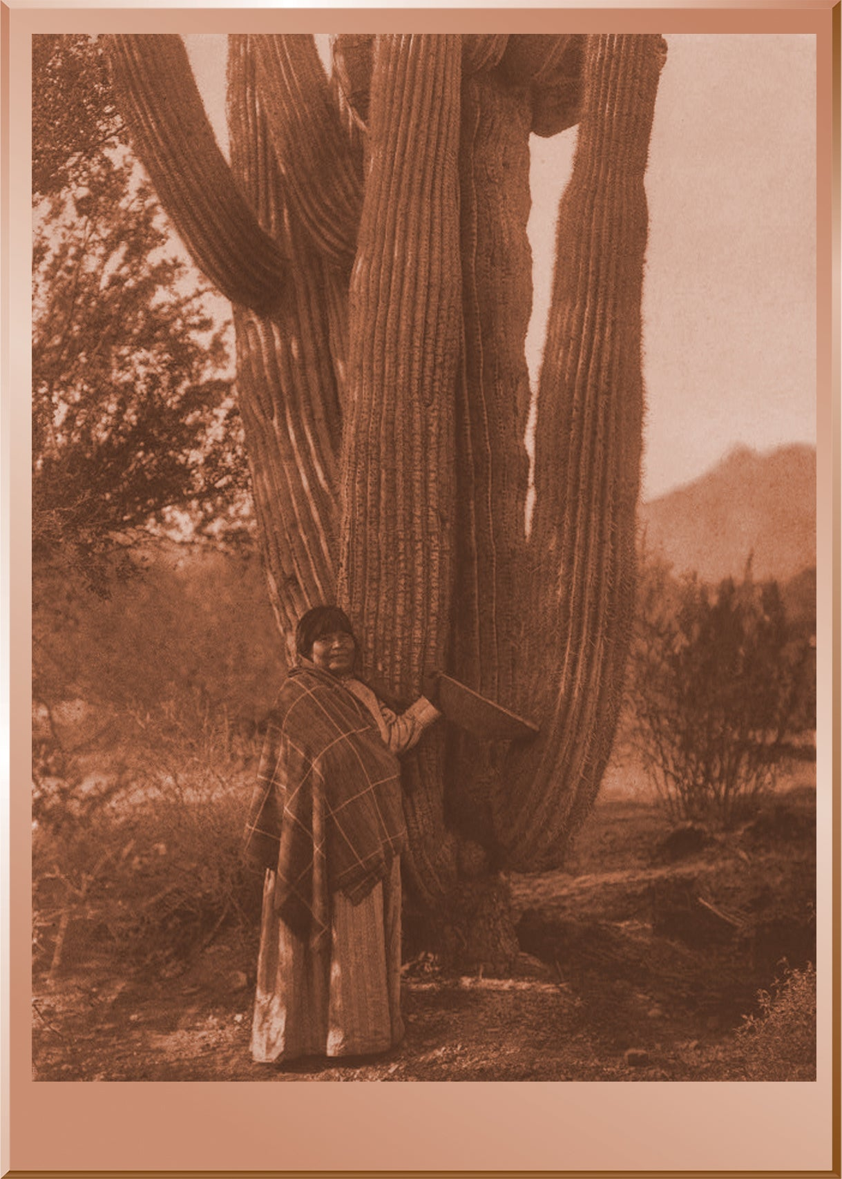 The Pima Woman