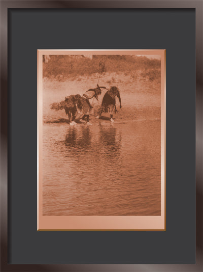 Water Rite Purification, Cheyenne Animal Dance