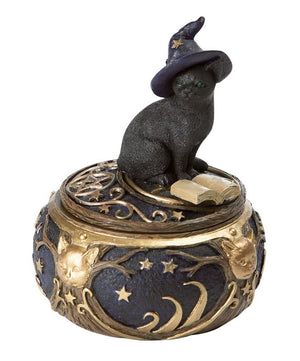 Magical Witchy Cat Box