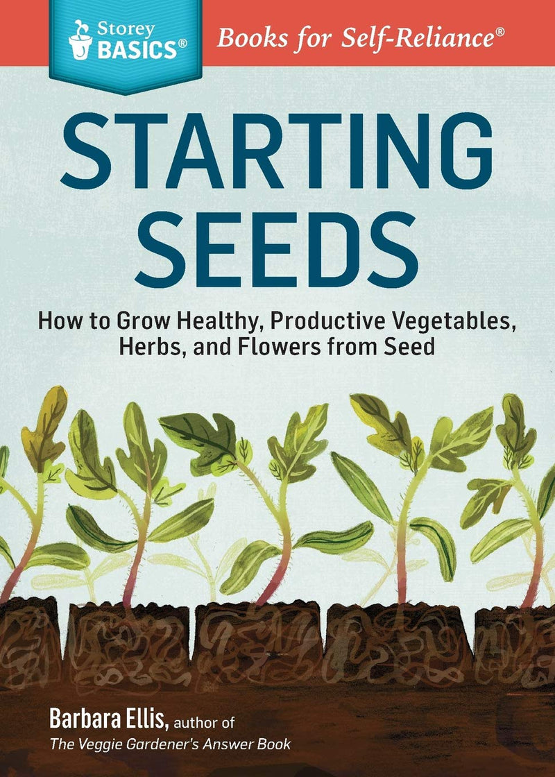 Starting Seeds by Barbara Ellis