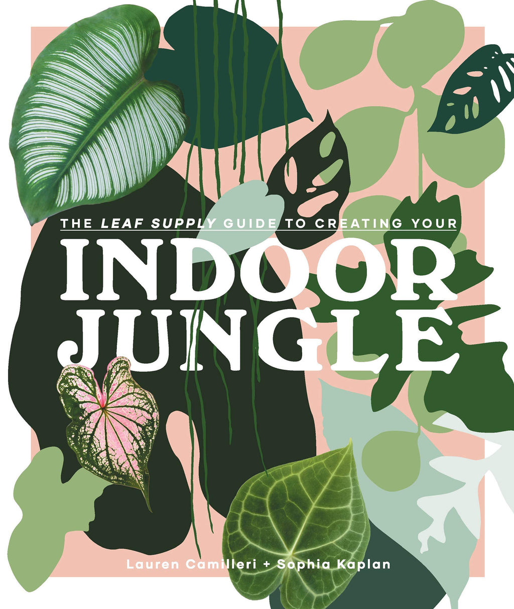 Indoor Jungle by Lauren Camilleri & Sophia Kaplan