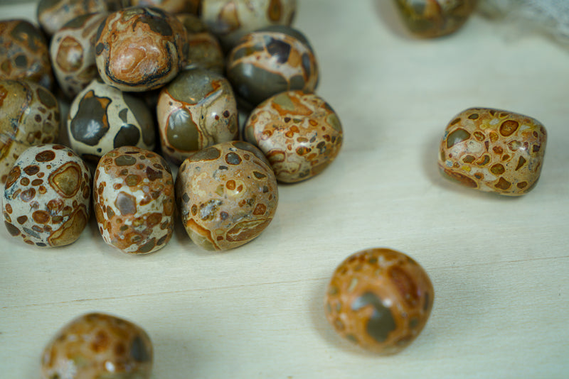 Tumbled Leopardite for Animal Communication