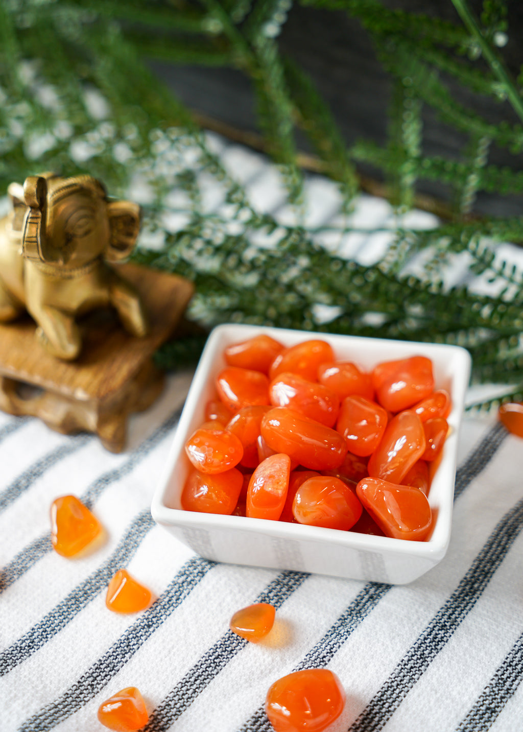 Tumbled Carnelian for Creativity & Energy