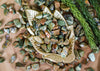 Tumbled Rainforest Jasper for Love & Earth Connection