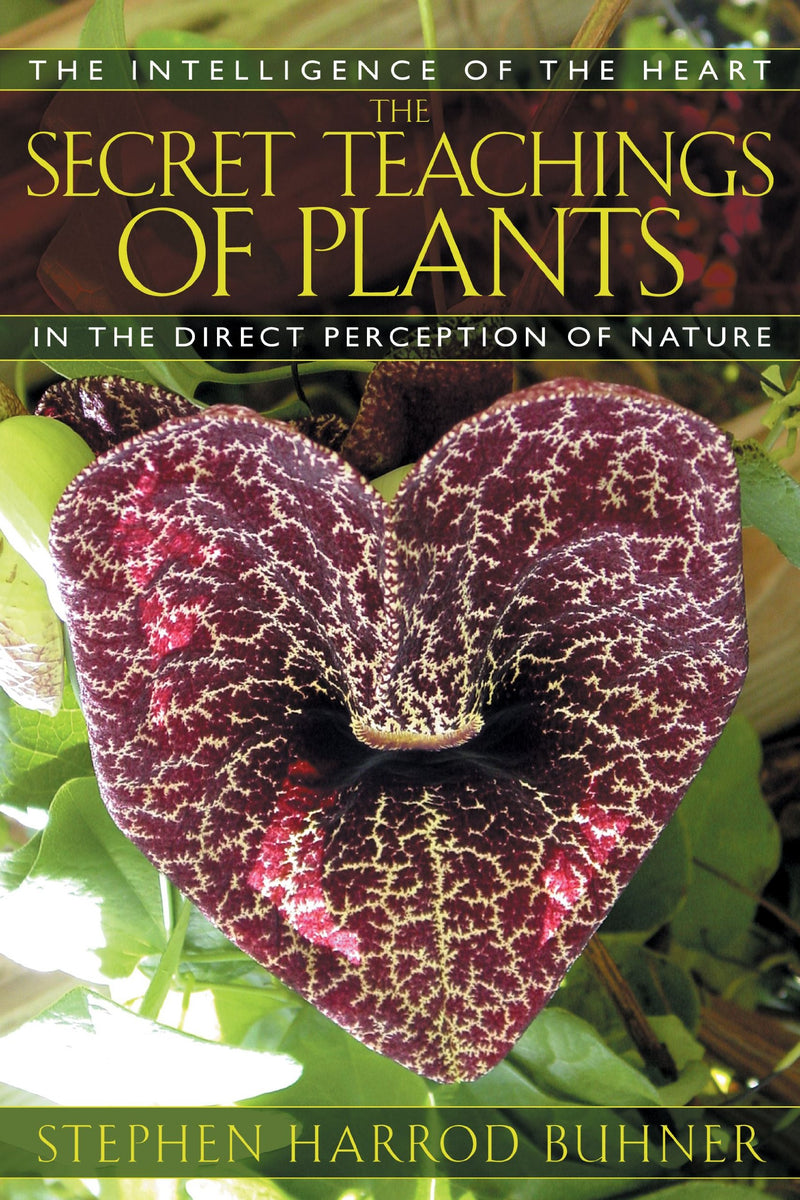 Secret Teachings of Plants by Stephen Buhner