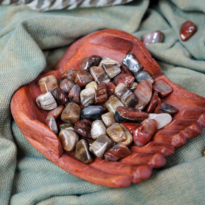 Tumbled Petrified Wood for Grounding & Ancestor Connection
