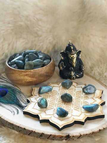 Chakra Symbol Palm Stones Set in Wooden Box