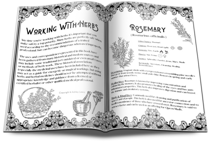[FREE DOWNLOAD] Rosemary Herbal Info Sheet
