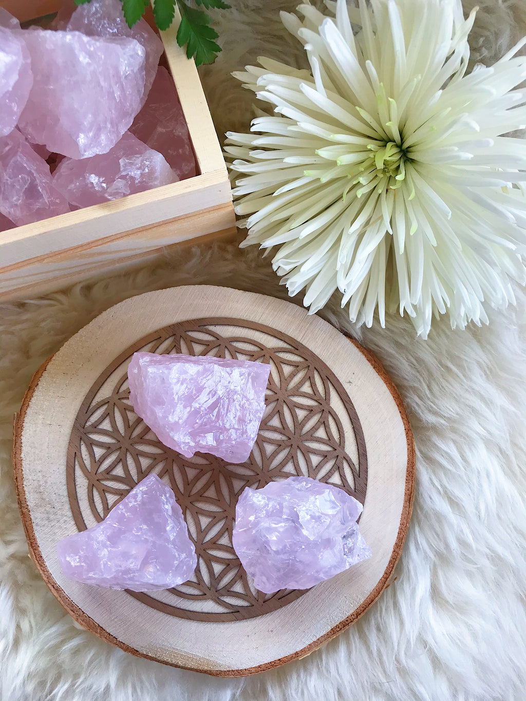 Rough Rose Quartz for Love & Relationships