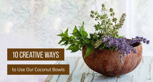 10 Creative Ways to Use Coconut Bowls
