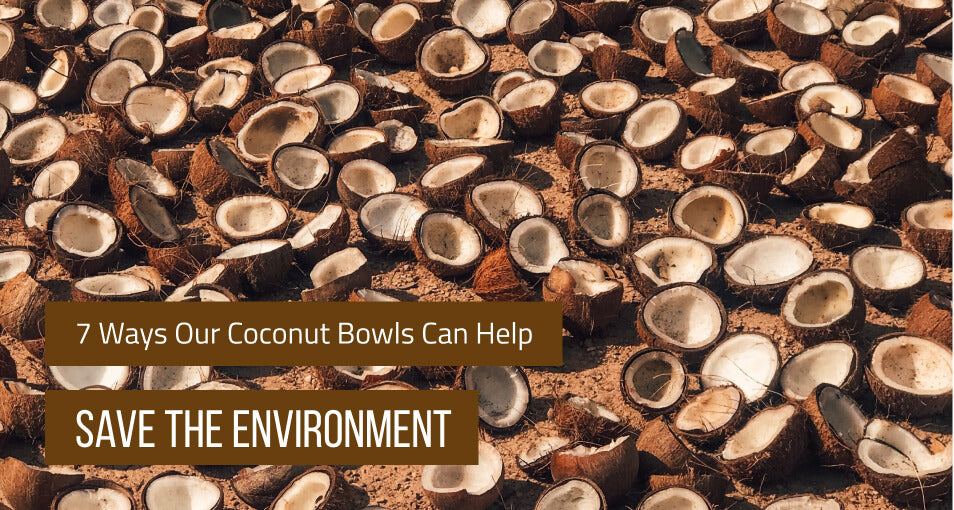 7 Ways Our Coconut Bowls Can Help Save the Environment
