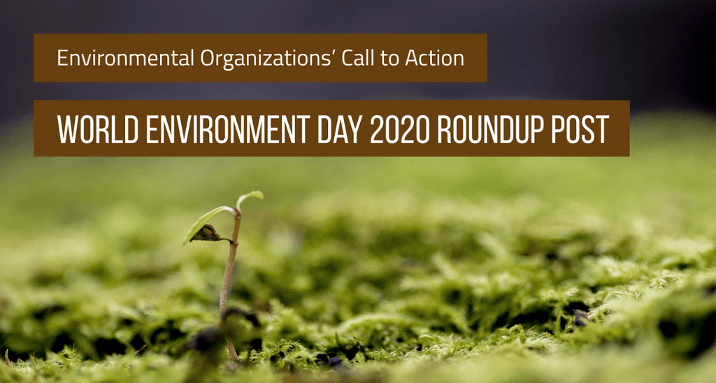 Environmental Organizations' Call to Action: World Environment Day 2020 Roundup Post