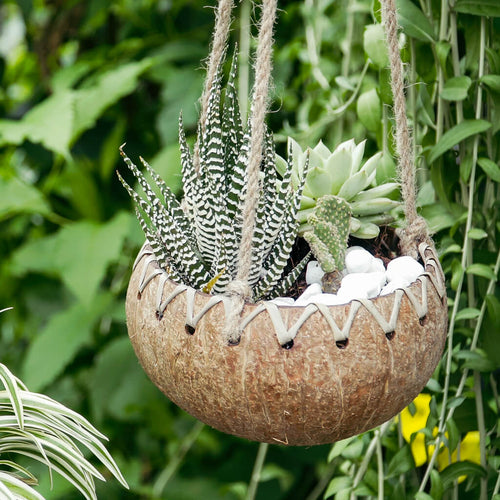 Hanging Fiber Coconut Planter