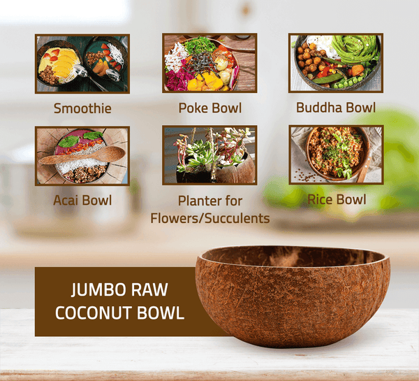 Jumbo Raw Coconut Bowl (14-15 cm diameter)
