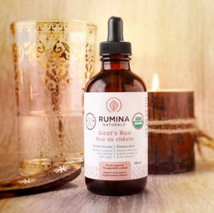 Rumina Natural's Organic Goat's Rue is a traditional herb to safely stimulate the development of mammary tissue and rapidly increase breast milk production. Certified organic. Sold online in the USA at The Eco Baby Co™.
