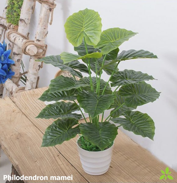 Philodendron mamei artificiel