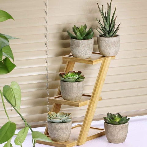 Faux cactus décoratifs - Set de 5 ( pot inclus )