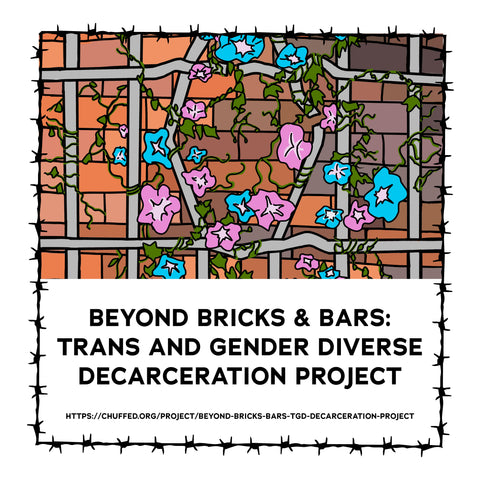 Title Tile with image and text | Beyond Bricks and Bars