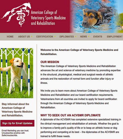AMERICAN COLLEGE OF VETERINARY SPORTS MEDICINE AND REHABILITATION