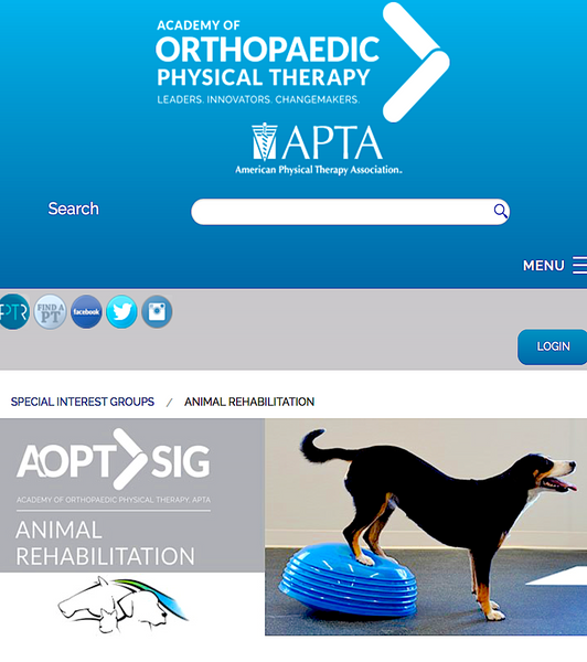 ANIMAL PHYSICAL THERAPY SPECIAL INTEREST GROUP