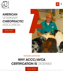 AMERICAN VETERINARY CHIROPRACTIC ASSOCIATION