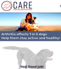 CANINE ARTHRITIS RESOURCE AND EDUCATION (CARE)