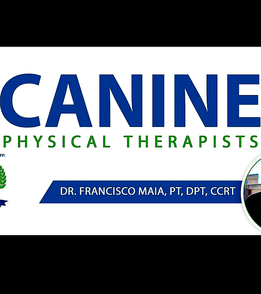 CANINE PHYSICAL THERAPISTS: educating PTs and PT students about canine rehabilitation