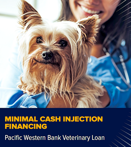 CAPITAL SOURCE: small business lending for veterinarians