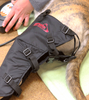 COMPANION COLD COMPRESSION: for post-surgical rehab and muscle recovery