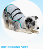 DRY COOLING VEST: prevent your dog from overheating