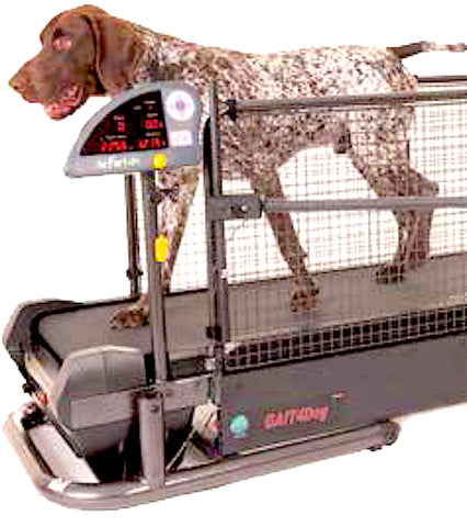 GAIT4DOG TREADMILLS: portable walkways and instrumented treadmills