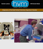 HYPERBARIC VETERINARY MEDICINE: originators of small animal vet hyperbaric chamber