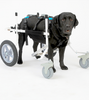 K9 CARTS: the original dog wheelchair; veterinarian established, patented, and fully adjustable