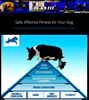 K9 FITNESS SOLUTIONS: online programs to improve your dog's fitness
