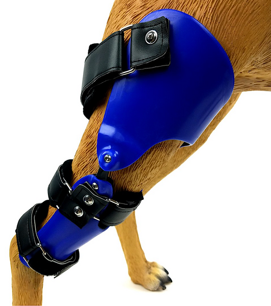 KVP ORTHOTICS: custom leg orthotics specifically designed for your pet