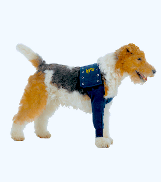 MEDICAL PET SLEEVES: protect front legs with wounds, ulcers, allergies, and other skin conditions